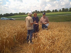 Brad Sutherland speaking with Chemist Professor from Univeristy of Wisconsin on Crop Circle Phenomena